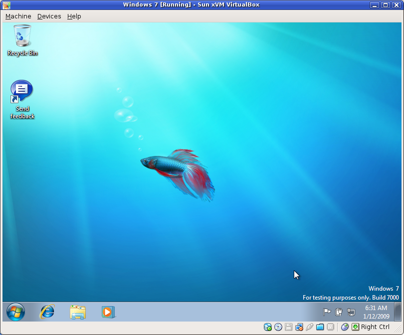 The desktop.... and a fish!!